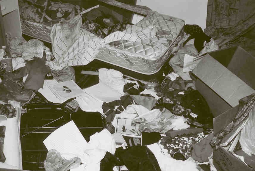 project on demat account essays